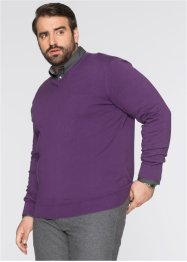 Pull col en V Regular Fit, bpc selection, myrtille